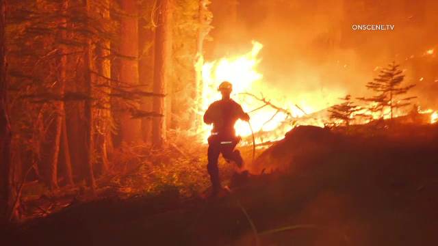 Incendiile de vegetație continuă să facă ravagii în California. Zeci de mii de oameni fug din calea flăcărilor
