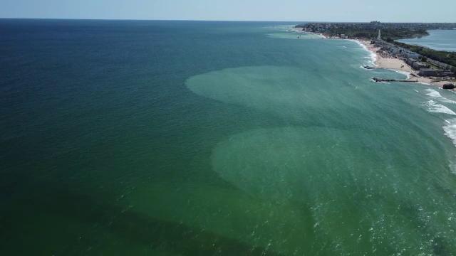 Spectacol neobișnuit oferit de Marea Neagră: Apa are două culori. Cum este posibil