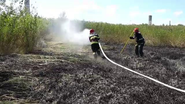 Un incendiu de vegetație a cuprins două hectare de la marginea orașului Baia Mare. Focul a fost stins după câteva ore