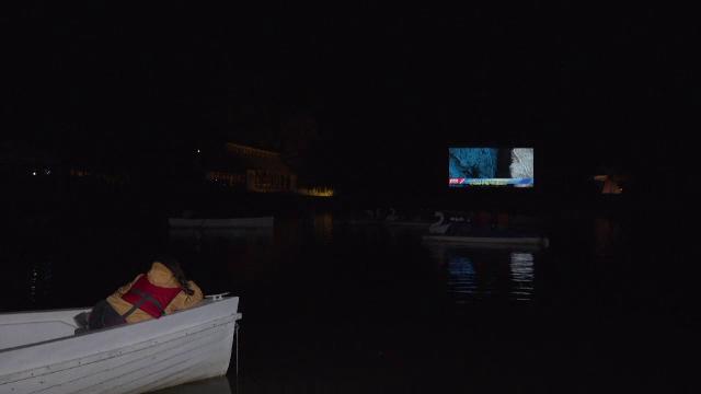 Filme urmărite din barcă. Documentarele despre incendiile din Grecia și furturile din pădurile noastre, printre preferate