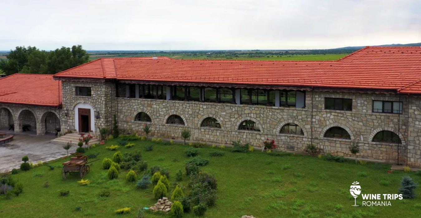 Wine Trips România. Domeniul Tohani, zona cea mai bună pentru Feteasca neagră