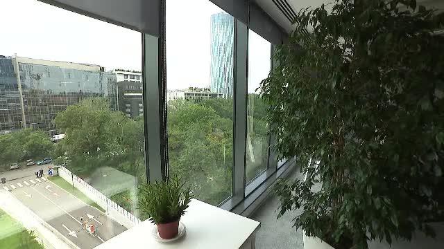 Ce substanțe nocive poate conține aerul din birouri și cum sunt afectați angajații