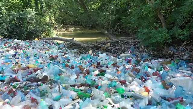 """Ciorogârla, sufocată de peturi care vor ajunge în deltă. Reacția halucinantă a Apelor Române: """"Peturile nu sunt o poluare"""""""