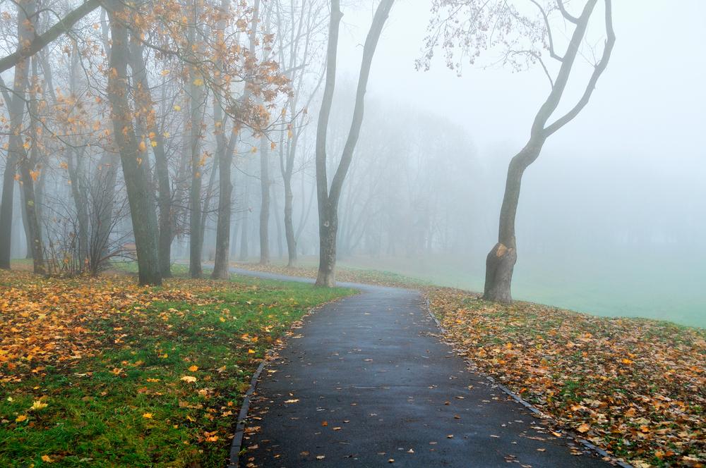 Vremea, 30 septembrie. Vremea se menține rece, iar bruma apare în decursul nopții