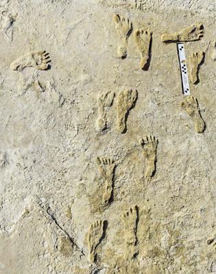 Amprente cu o vechime de 23.000 de ani rescriu istoria prezenţei umane în America