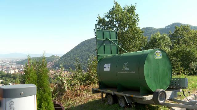 O ursoaică și cei trei pui ai săi nu se lasă prinși într-o capcană pusă de autorități în Brașov