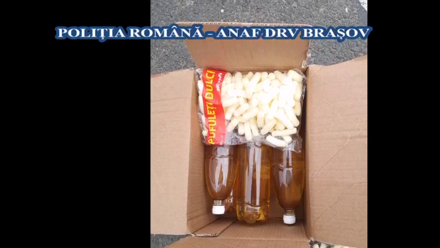 Transport ilegal de vin din Republica Moldova, depistat în Alba. Cum a fost prins șoferul