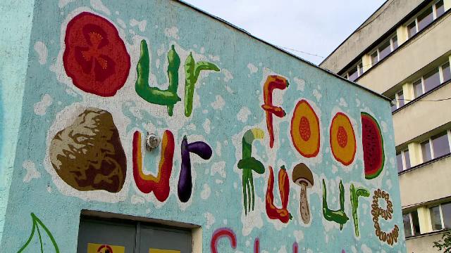 O pictură murală inedită, realizată de tineri artiști, în Iași. Ce o face așa de specială